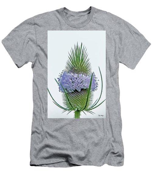 Teasel On White Men's T-Shirt (Athletic Fit)