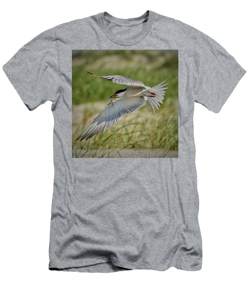 Tern Men's T-Shirt (Athletic Fit)