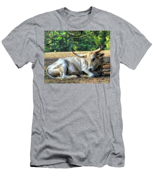 Texas Longhorn Gentle Giant Men's T-Shirt (Athletic Fit)