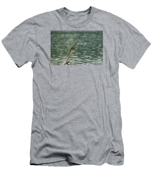 The Beauty Of The Nature Men's T-Shirt (Athletic Fit)