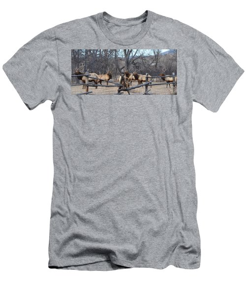 Men's T-Shirt (Slim Fit) featuring the photograph The Boys by Billie Colson
