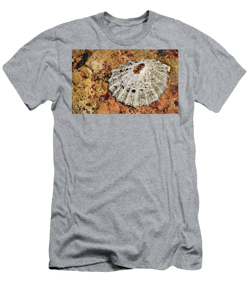 The Common Limpet Men's T-Shirt (Slim Fit) by Werner Lehmann