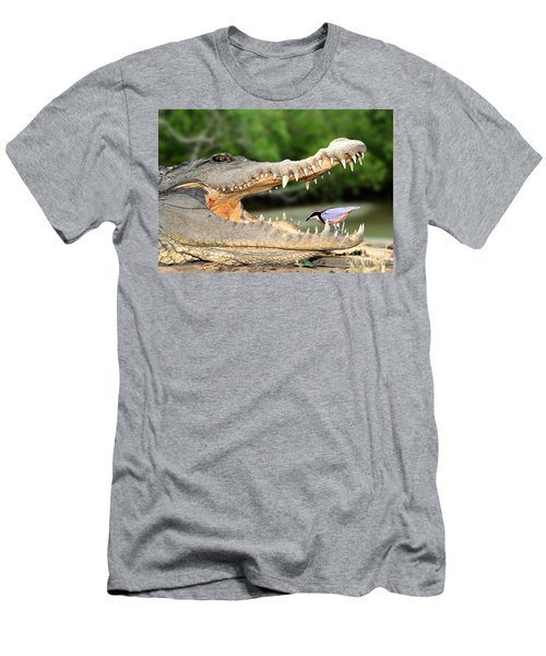 The Crocodile Bird Men's T-Shirt (Athletic Fit)