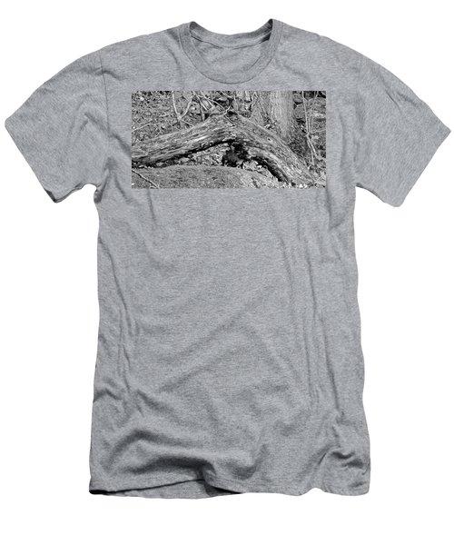 The Fallen - Dragon Men's T-Shirt (Athletic Fit)
