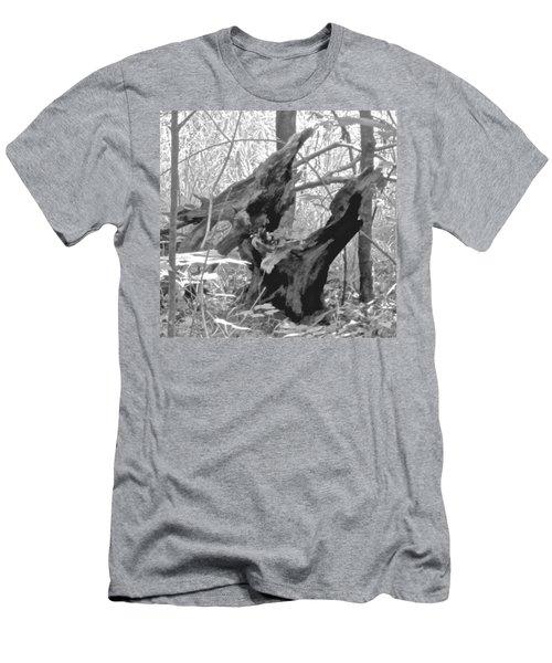 The Fallen - Dragon Skull Men's T-Shirt (Athletic Fit)