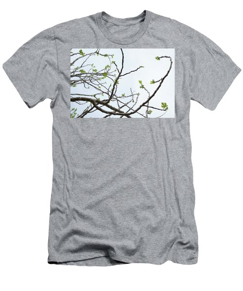 The Fig Tree Budding Men's T-Shirt (Athletic Fit)