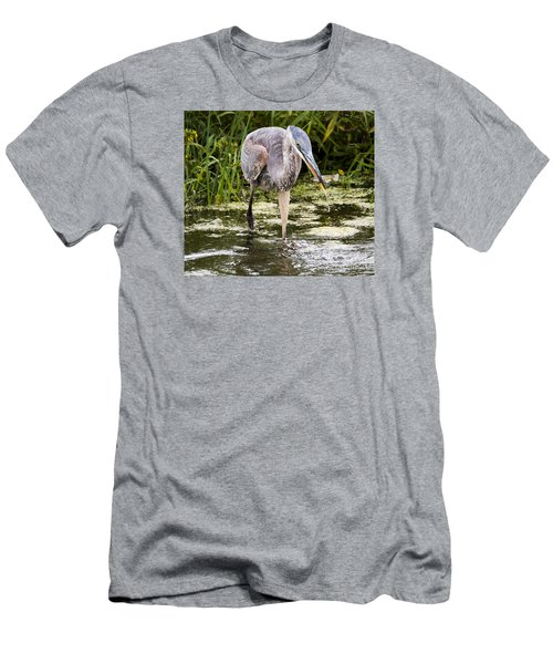 The Great Blue Heron Men's T-Shirt (Athletic Fit)