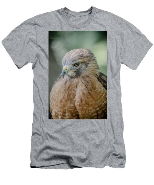 The Hawk Men's T-Shirt (Slim Fit) by David Collins