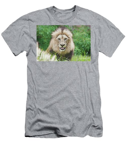 The King Men's T-Shirt (Athletic Fit)