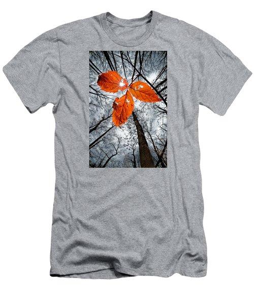 The Last Leaf Of November Men's T-Shirt (Slim Fit) by Robert Charity