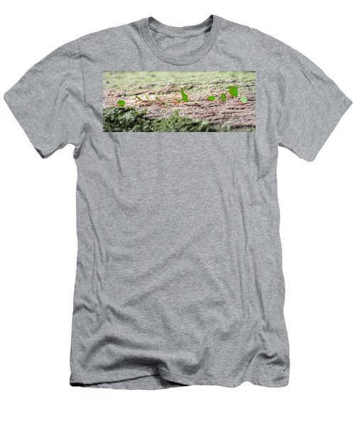 The Leaf Parade  Men's T-Shirt (Athletic Fit)