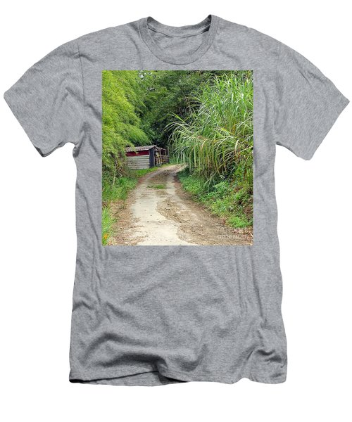 The Old Forest Road Men's T-Shirt (Slim Fit)