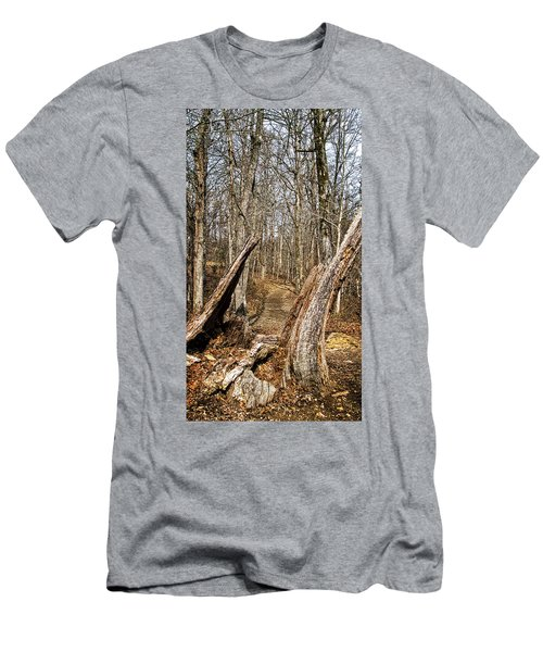 The Path Through The Woods Men's T-Shirt (Athletic Fit)