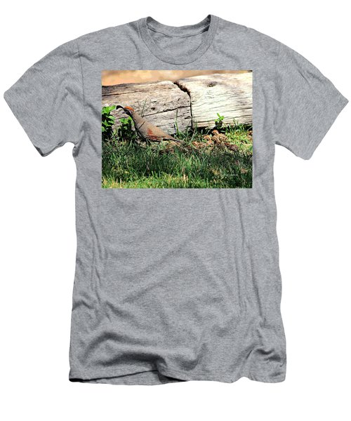 The Quail Family Men's T-Shirt (Athletic Fit)