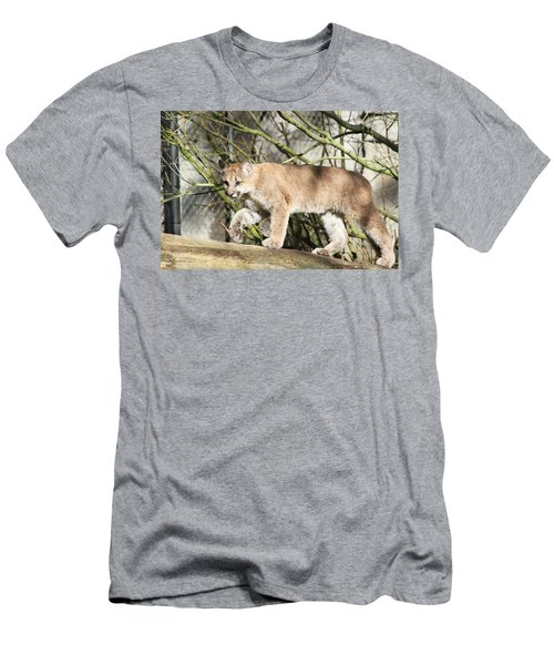 Men's T-Shirt (Slim Fit) featuring the photograph The Red Carpet by Laddie Halupa