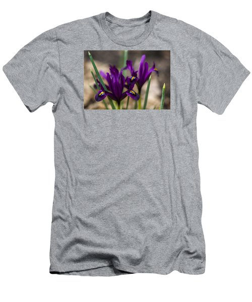 The Rise Of The Early Royal Dwarf Iris Men's T-Shirt (Slim Fit) by Dan Hefle