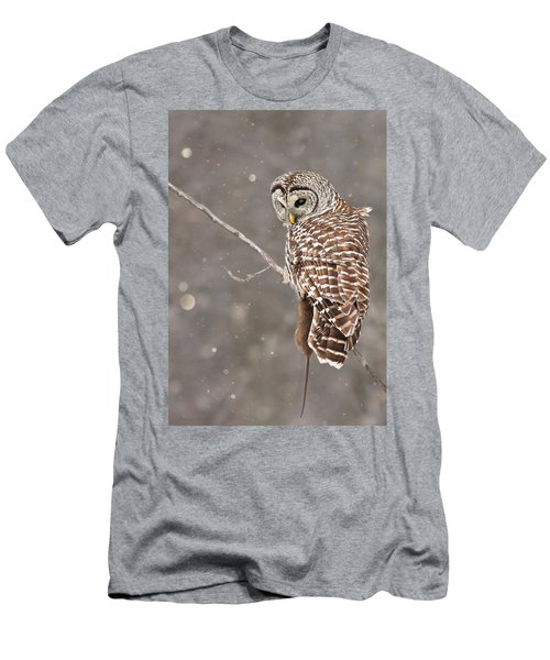 The Silent Hunter Men's T-Shirt (Slim Fit) by Mircea Costina Photography