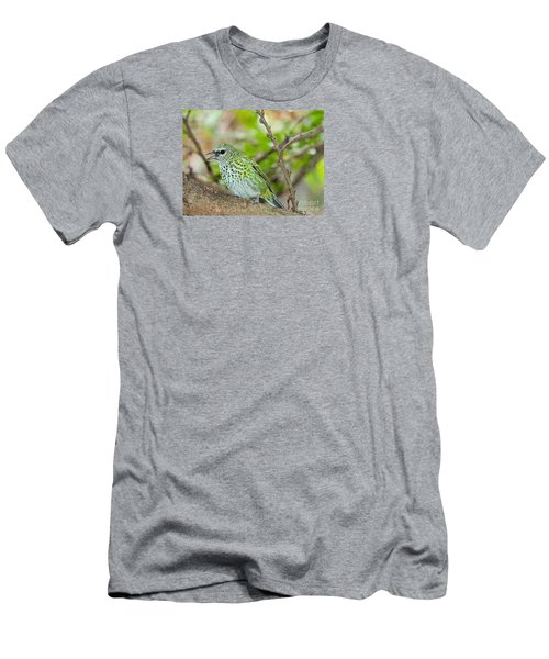 Men's T-Shirt (Slim Fit) featuring the photograph The Spotted Tanager by Judy Kay