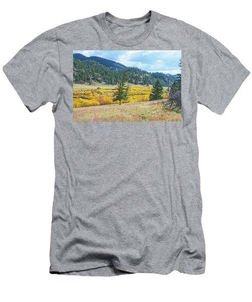 The Sublime Beauty That Ensorcells The Soul.  Men's T-Shirt (Athletic Fit)