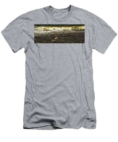The Wading Willet  Men's T-Shirt (Athletic Fit)