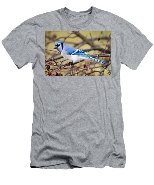 The Winter Blue Jay  Men's T-Shirt (Slim Fit) by Ricky L Jones