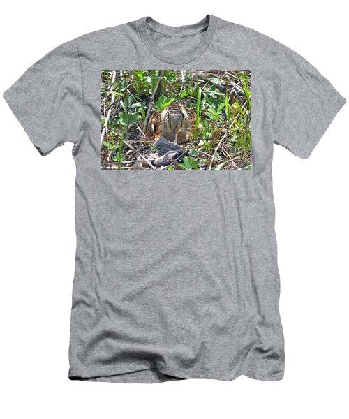 Those Eyes, Woodcock Eyes Men's T-Shirt (Athletic Fit)