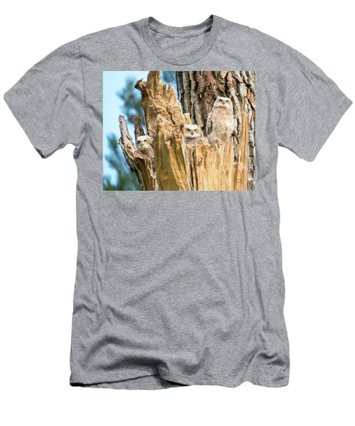 Three Great Horned Owl Babies Men's T-Shirt (Athletic Fit)