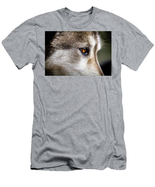 Men's T-Shirt (Slim Fit) featuring the photograph Timber Wolf Stare by Teri Virbickis