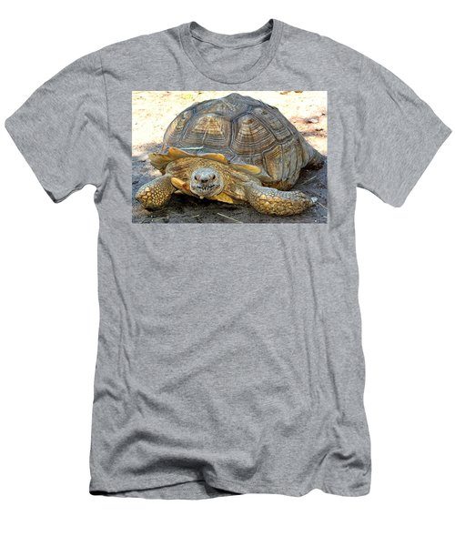 Timothy The Giant Tortoise Men's T-Shirt (Athletic Fit)