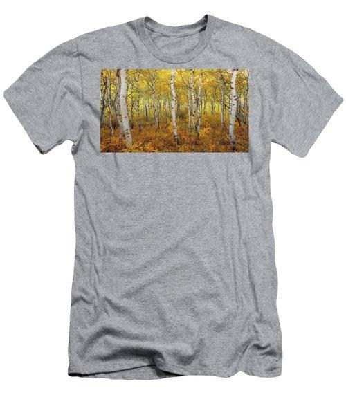 Transition Men's T-Shirt (Athletic Fit)