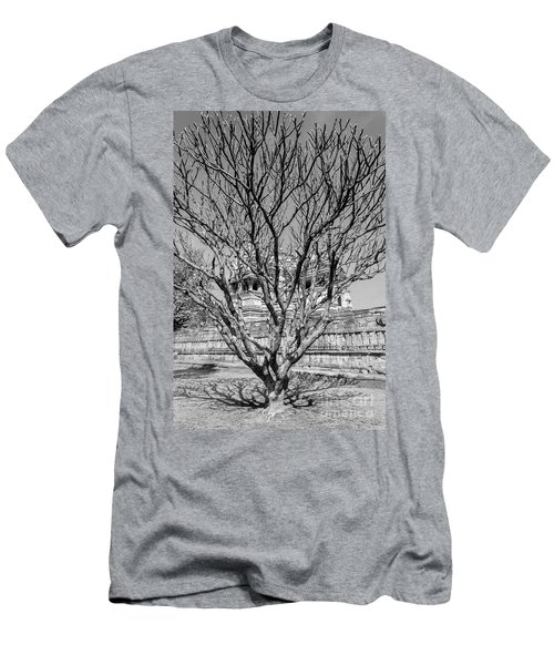 Tree And Temple Men's T-Shirt (Athletic Fit)