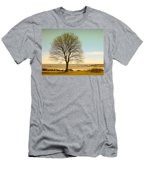 Tree At New Castle Common Men's T-Shirt (Slim Fit) by Nancy De Flon