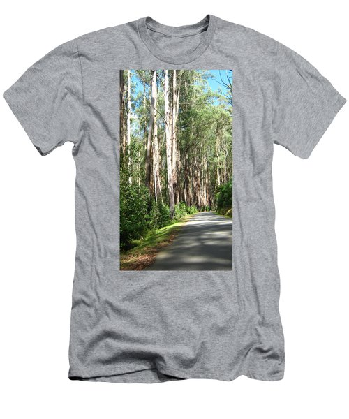 Tree Lined Mountain Road Men's T-Shirt (Athletic Fit)
