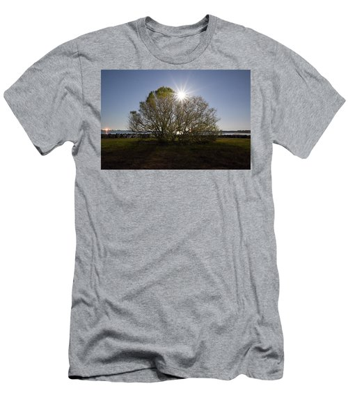 Tree Of The Night Men's T-Shirt (Athletic Fit)