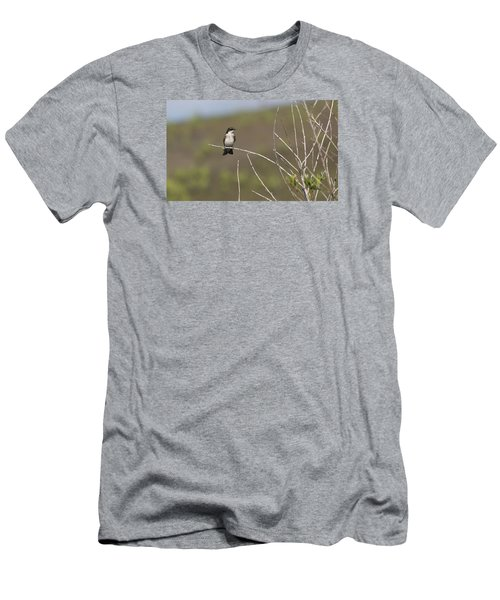 Tree Swallow Men's T-Shirt (Athletic Fit)
