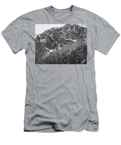 Treefall Men's T-Shirt (Athletic Fit)