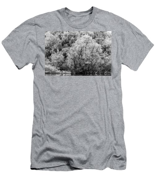 Trees On The River Men's T-Shirt (Athletic Fit)