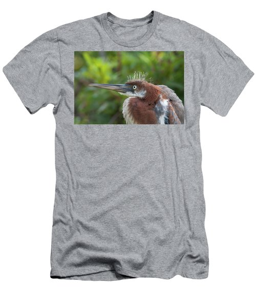 Tricolored Heron - Bad Hair Day Men's T-Shirt (Athletic Fit)
