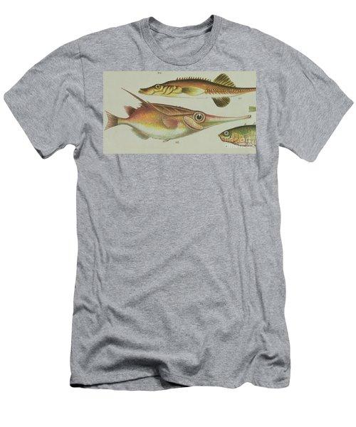 Trumpet Fish Men's T-Shirt (Athletic Fit)