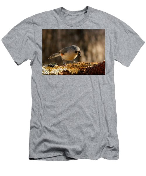 Tufted Titmouse In Fall Men's T-Shirt (Athletic Fit)