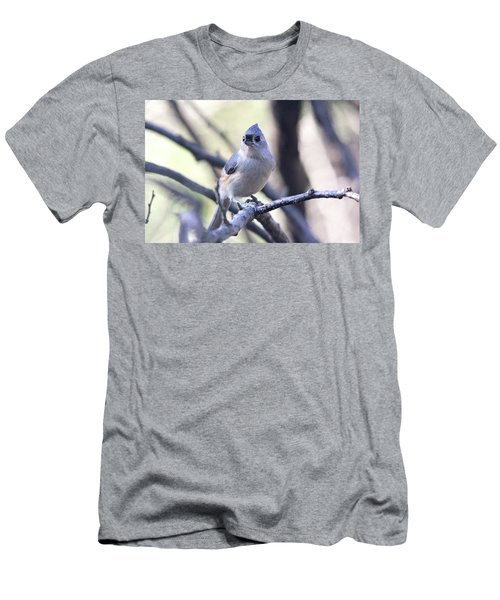 Tufted Titmouse Men's T-Shirt (Slim Fit) by Trina Ansel