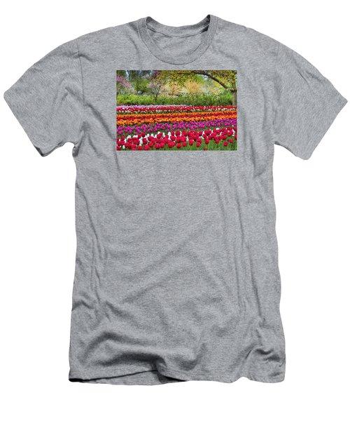 Tulip Mania Men's T-Shirt (Athletic Fit)