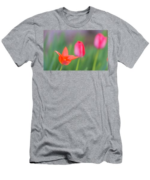 Tulips In My Garden Men's T-Shirt (Athletic Fit)
