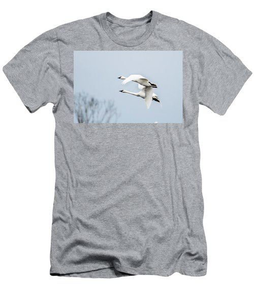 Tundra Swan Lift-off Men's T-Shirt (Athletic Fit)
