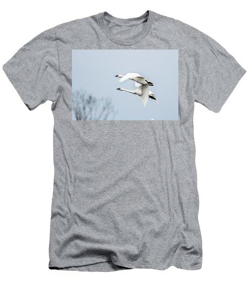 Tundra Swan Lift-off Men's T-Shirt (Slim Fit)