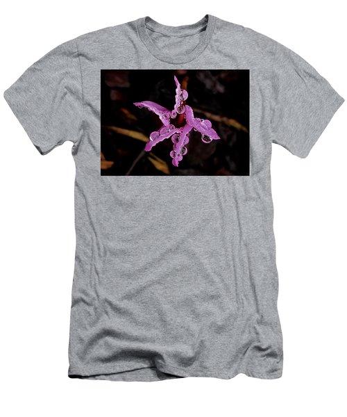 Twinkle, Twinkle Little Star Men's T-Shirt (Slim Fit) by Richard Cummings