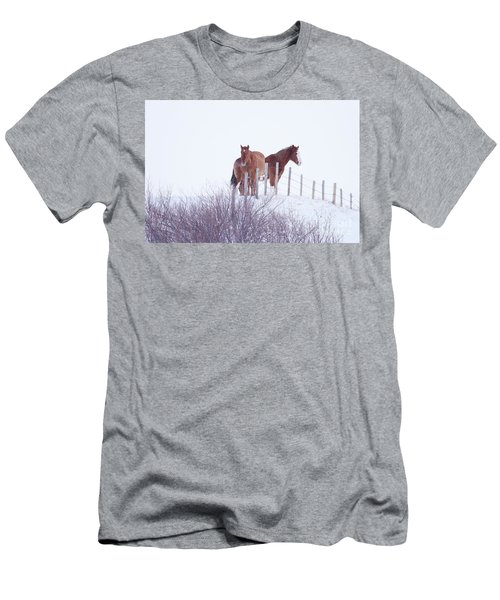 Two Horses In The Snow Men's T-Shirt (Athletic Fit)
