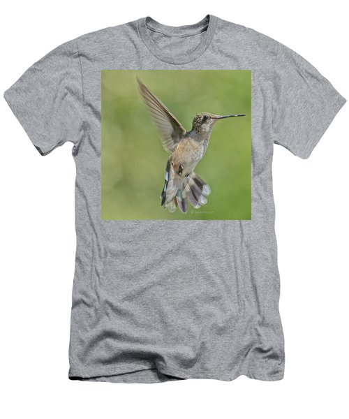 Untitled Hum_bird_four Men's T-Shirt (Athletic Fit)