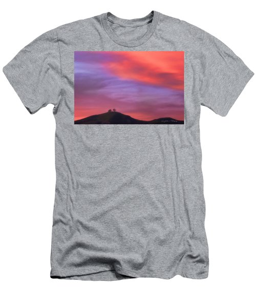 Ventura Ca Two Trees At Sunset Men's T-Shirt (Athletic Fit)