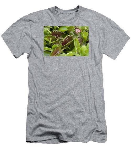 Men's T-Shirt (Athletic Fit) featuring the photograph Venus Flytrap by Ken Barrett